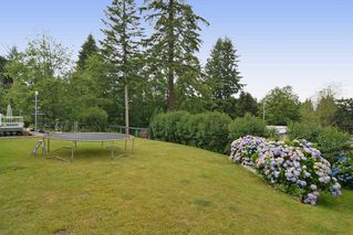 Photo 19: 20261 48 Avenue in Langley: Langley City House for sale : MLS®# R2101946