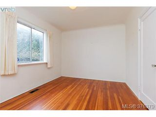 Photo 10: 1838 Newton Street in VICTORIA: SE Camosun Single Family Detached for sale (Saanich East)  : MLS®# 376379
