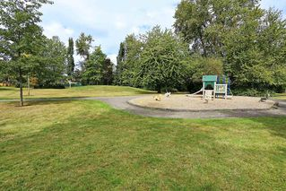 Photo 20: 6060 BROOKS Crescent in Surrey: Cloverdale BC House for sale (Cloverdale)  : MLS®# R2163675