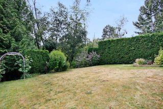 Photo 19: 30868 SANDPIPER Drive in Abbotsford: Abbotsford West House for sale : MLS®# R2191509