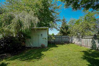 Photo 19: 8449 116A Street in Delta: Annieville House for sale (N. Delta)  : MLS®# R2282680