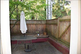 Photo 5: 114 295 SCHOOLHOUSE Street in Coquitlam: Maillardville Condo for sale : MLS®# R2297662