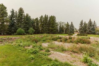 Photo 18: 4815 DONSDALE Drive in Edmonton: Zone 20 Vacant Lot for sale : MLS®# E4127024