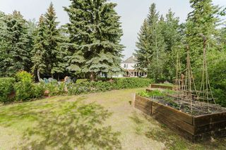 Photo 24: 4815 DONSDALE Drive in Edmonton: Zone 20 Vacant Lot for sale : MLS®# E4127024