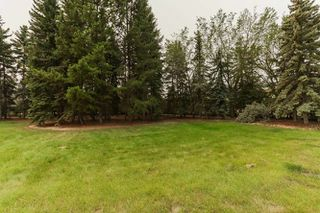 Photo 13: 4815 DONSDALE Drive in Edmonton: Zone 20 Vacant Lot for sale : MLS®# E4127024