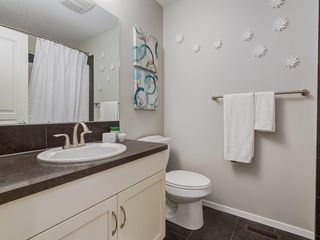 Photo 27: 184 COPPERPOND Road SE in Calgary: Copperfield Detached for sale : MLS®# C4213844