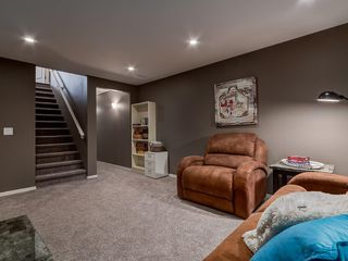Photo 30: 184 COPPERPOND Road SE in Calgary: Copperfield Detached for sale : MLS®# C4213844