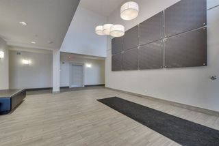 Photo 22: 320 1004 Rosenthal Boulevard in Edmonton: Zone 58 Condo for sale : MLS®# E4141285