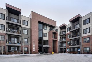 Photo 27: 320 1004 Rosenthal Boulevard in Edmonton: Zone 58 Condo for sale : MLS®# E4141285
