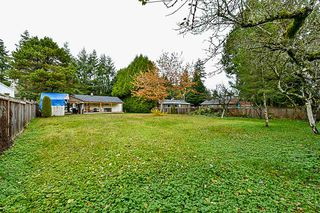 Photo 8: 15022 92 Avenue in Surrey: Fleetwood Tynehead House for sale : MLS®# R2339294