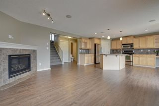 Photo 11: 763 GREEN Wynd in Edmonton: Zone 58 House for sale : MLS®# E4152135