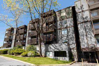 Photo 19: 107 9682 134 Street in Surrey: Whalley Condo for sale (North Surrey)  : MLS®# R2364831