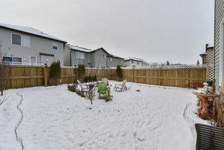Photo 31:  in Edmonton: Zone 58 House for sale : MLS®# E4183859