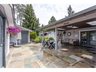 """Photo 33: 3926 204A Street in Langley: Brookswood Langley House for sale in """"Brookswood"""" : MLS®# R2461276"""