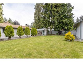 """Photo 35: 3926 204A Street in Langley: Brookswood Langley House for sale in """"Brookswood"""" : MLS®# R2461276"""