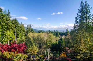 Photo 2: 2138 BRAESIDE Place in Coquitlam: Westwood Plateau House for sale : MLS®# R2515366