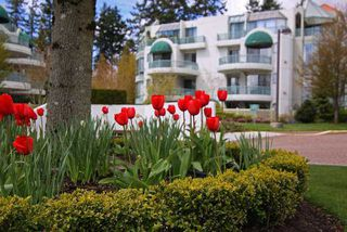 "Photo 16: 302 1725 MARTIN Drive in Surrey: Sunnyside Park Surrey Condo for sale in ""Southwynd"" (South Surrey White Rock)  : MLS®# F1404627"