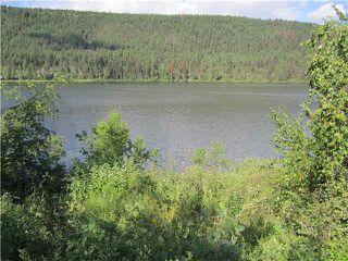 Photo 3: LOT 5 DUCKWORTH LAKE: McLeese Lake Land for sale (Williams Lake (Zone 27))  : MLS®# N246849