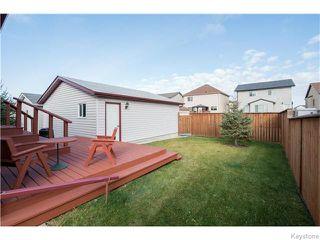 Photo 18: 393 Rougeau Avenue in WINNIPEG: Transcona Residential for sale (North East Winnipeg)  : MLS®# 1528891