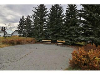 Photo 30: 100 RIVER ROCK Circle SE in Calgary: Riverbend House for sale : MLS®# C4088178