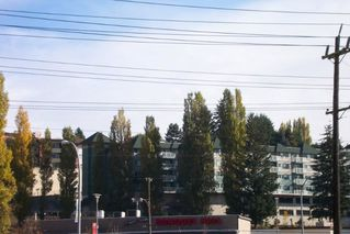 "Photo 1: 107 33960 OLD YALE Road in Abbotsford: Central Abbotsford Condo for sale in ""Old Yale Heights"" : MLS®# R2130106"