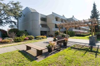 """Photo 1: 211 15282 19TH Avenue in Surrey: King George Corridor Condo for sale in """"Park View Terrace"""" (South Surrey White Rock)  : MLS®# R2132477"""