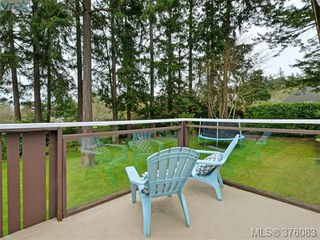 Photo 17: 4561 Montford Crescent in VICTORIA: SE Gordon Head Single Family Detached for sale (Saanich East)  : MLS®# 376083