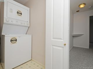 Photo 15: 203 1501 Richmond Avenue in VICTORIA: Vi Jubilee Condo Apartment for sale (Victoria)  : MLS®# 381068