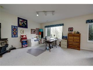 Photo 36: 438 DOUGLAS PARK VW SE in Calgary: Douglasdale/Glen House for sale : MLS®# C4117673