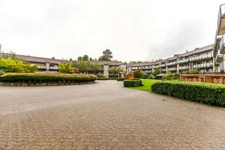 "Photo 19: 408 4373 HALIFAX Street in Burnaby: Brentwood Park Condo for sale in ""BRENT GARDENS"" (Burnaby North)  : MLS®# R2203706"