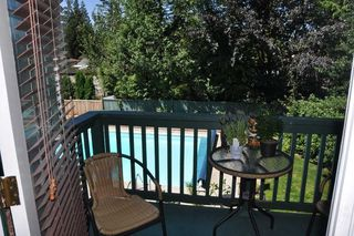 Photo 9: 20649 TYNER Avenue in Maple Ridge: Northwest Maple Ridge House for sale : MLS®# R2211946