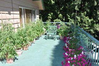 Photo 5: 20649 TYNER Avenue in Maple Ridge: Northwest Maple Ridge House for sale : MLS®# R2211946