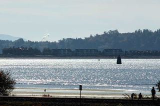 Photo 5: 205 15777 MARINE DRIVE: White Rock Condo for sale (South Surrey White Rock)  : MLS®# R2214388