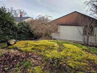 Photo 17: 2528 Forbes Street in VICTORIA: Vi Oaklands Single Family Detached for sale (Victoria)  : MLS®# 387173