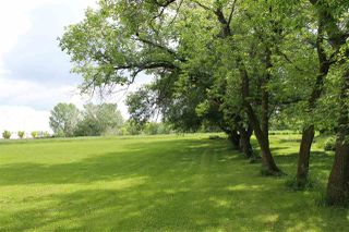 Photo 5: 301 - 52349 RGE RD 233: Rural Strathcona County Rural Land/Vacant Lot for sale : MLS®# E4129773