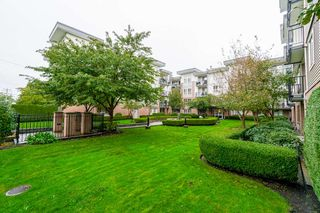 """Photo 4: 401 5430 201 Street in Langley: Langley City Condo for sale in """"Sonnet"""" : MLS®# R2325455"""
