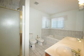 Photo 20: 258 WOLF RIDGE Close in Edmonton: Zone 22 House for sale : MLS®# E4170997