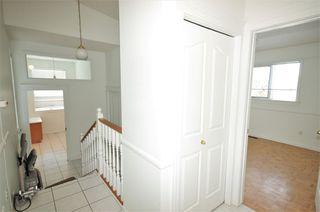 Photo 25: 258 WOLF RIDGE Close in Edmonton: Zone 22 House for sale : MLS®# E4170997