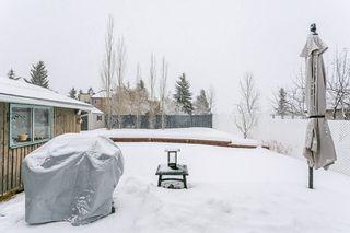 Photo 24: 2627 83 Street NW in Edmonton: Zone 29 House for sale : MLS®# E4189408
