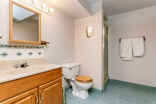 Photo 23: 2627 83 Street NW in Edmonton: Zone 29 House for sale : MLS®# E4189408