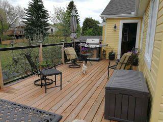 Photo 39: 302 VISTA Court: Sherwood Park House for sale : MLS®# E4195510