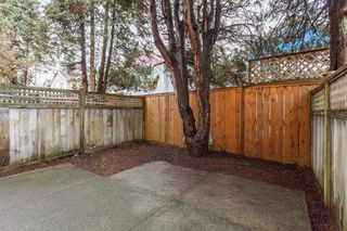 Photo 16: D 3441 E 43RD Avenue in Vancouver: Killarney VE Townhouse for sale (Vancouver East)  : MLS®# R2029018