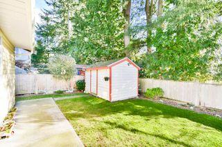 Photo 19: 15616 84A Avenue in Surrey: Fleetwood Tynehead House for sale : MLS®# R2033176