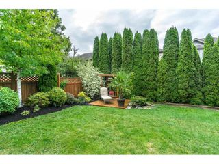 """Photo 20: 14570 58A Avenue in Surrey: Sullivan Station House for sale in """"Panorama"""" : MLS®# R2101562"""