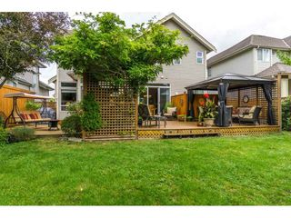 """Photo 19: 14570 58A Avenue in Surrey: Sullivan Station House for sale in """"Panorama"""" : MLS®# R2101562"""