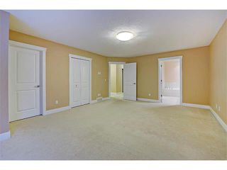 Photo 17: 176 MIKE RALPH Way SW in Calgary: Garrison Green House for sale : MLS®# C4091127