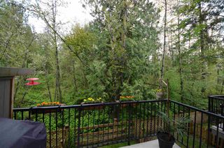 "Photo 1: 55 10151 240 Street in Maple Ridge: Albion Townhouse for sale in ""ALBION STATION"" : MLS®# R2162030"