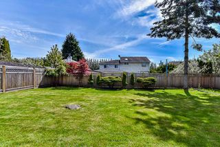 Photo 19: 12290 72A Avenue in Surrey: West Newton House for sale : MLS®# R2162774