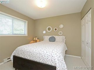 Photo 10: 4183 Tuxedo Drive in VICTORIA: SE Lake Hill Single Family Detached for sale (Saanich East)  : MLS®# 379137