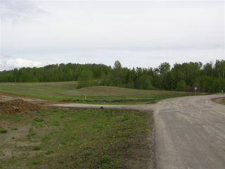 Photo 10: 18 53214 RGE RD 13 Road: Rural Parkland County Rural Land/Vacant Lot for sale : MLS®# E4099595
